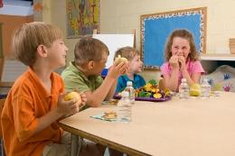 Kindergarten, Überblick, gute Einrichtungen erkennen