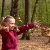 Kindergarten, pädagogisches Profil, Waldkindergarten
